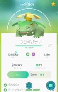 ポケモンGO黄金のフシギバナ(色違い)